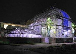 nuit-tropicale-au-jardin-plantes-3098918_0