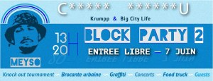 Block-party-II-nantes-juin-2015
