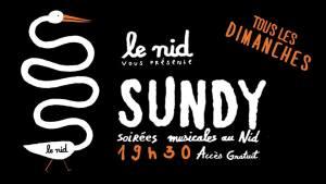 Le-Voyage-à-Nantes-Sundy