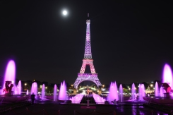Soirée de lancOctobre roseement de la campagne contre le cancer du sein au Palais Chaillot le 7 Octobre 2014 à Paris, France |